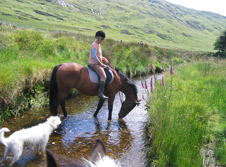 Horse riding West Cork